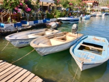 Moored boats 3